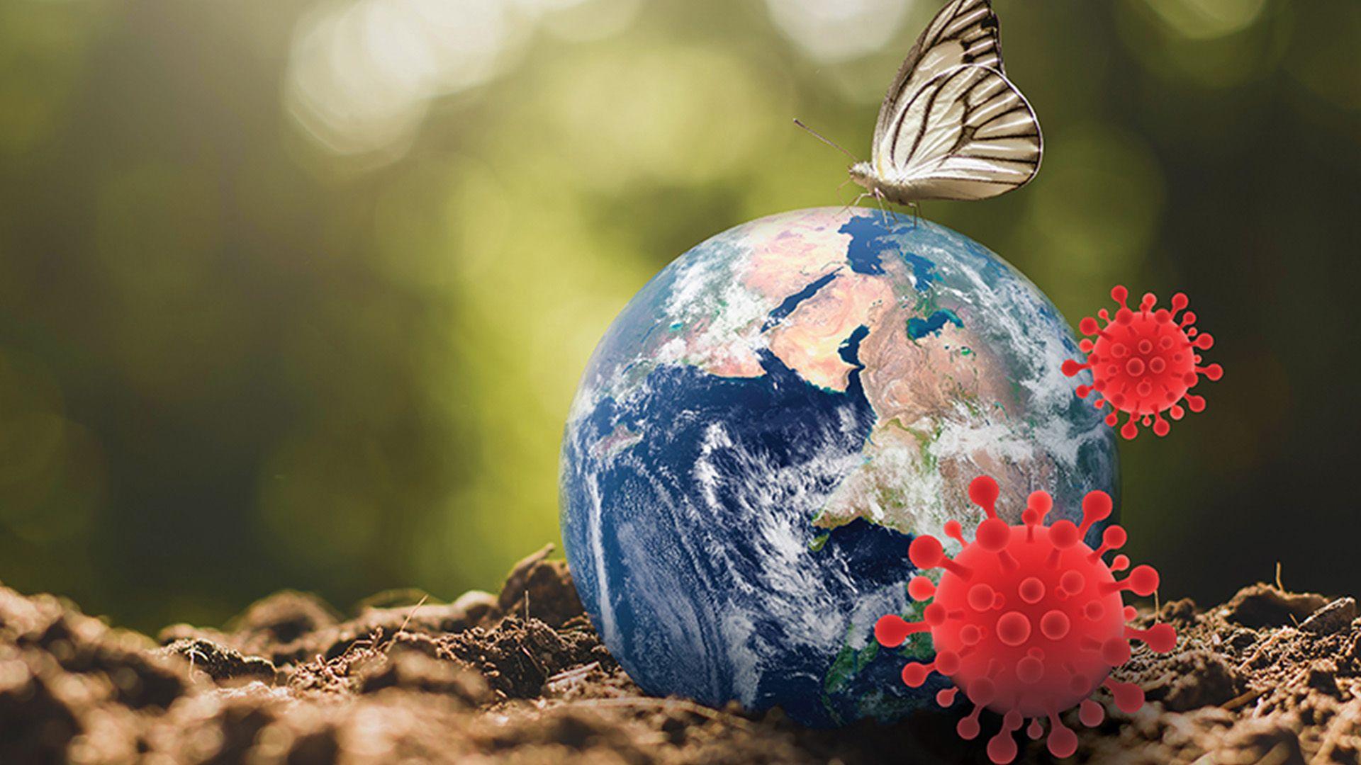building sustainable planet, Sustainability